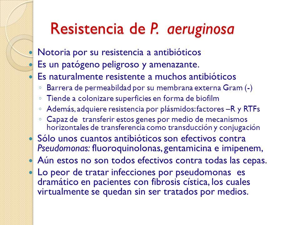 Resistencia de P. aeruginosa Notoria por su resistencia a antibióticos Es un patógeno peligroso y amenazante. Es naturalmente resistente a muchos anti