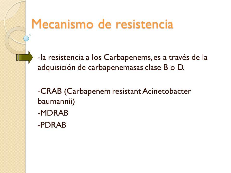 Mecanismo de resistencia -la resistencia a los Carbapenems, es a través de la adquisición de carbapenemasas clase B o D. -CRAB (Carbapenem resistant A