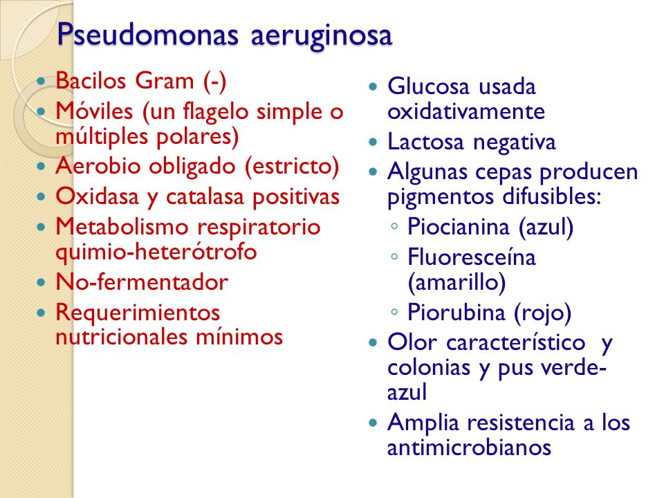 Pseudomonas aeruginosa Bacilos Gram (-) Móviles (un flagelo simple o múltiples polares) Aerobio obligado (estricto) Oxidasa y catalasa positivas Metab