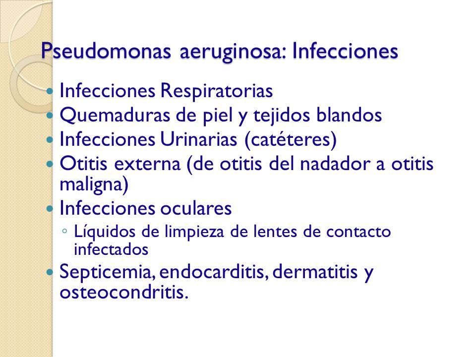 Pseudomonas aeruginosa: Infecciones Infecciones Respiratorias Quemaduras de piel y tejidos blandos Infecciones Urinarias (catéteres) Otitis externa (d