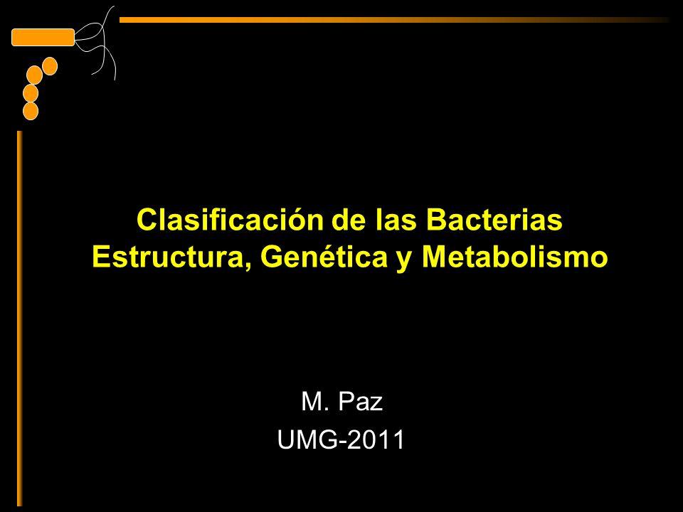 Clasificación de las Bacterias Estructura, Genética y Metabolismo M. Paz UMG-2011