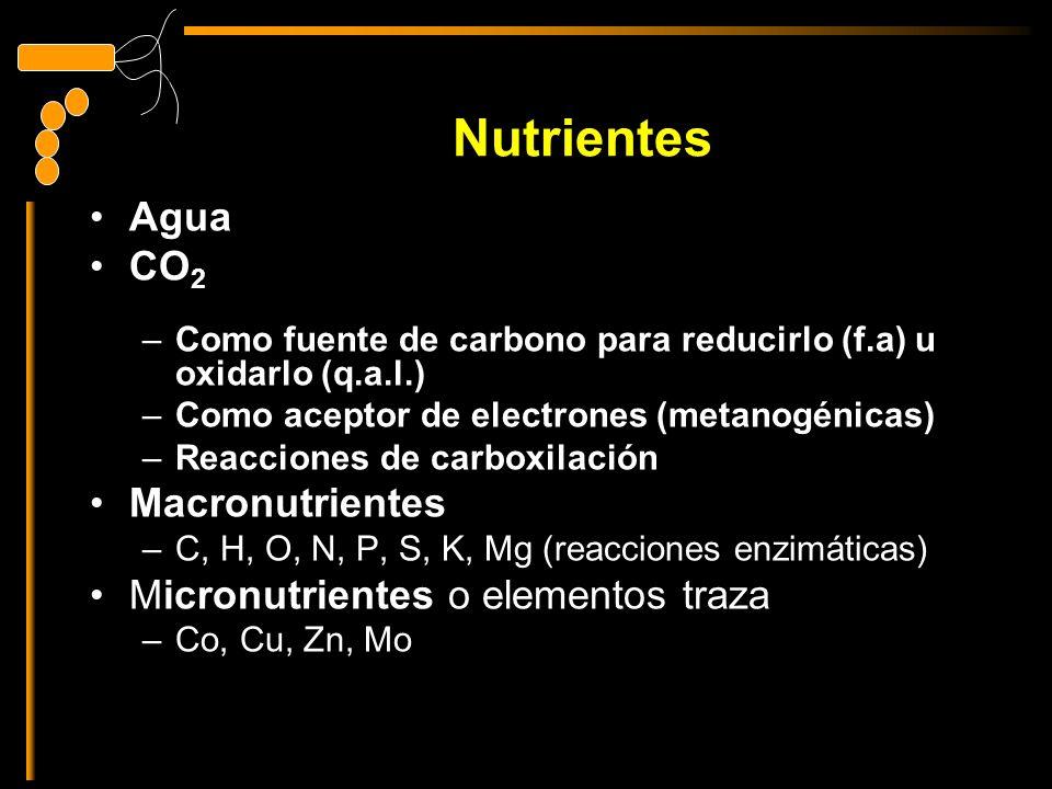 Nutrientes Agua CO 2 –Como fuente de carbono para reducirlo (f.a) u oxidarlo (q.a.l.) –Como aceptor de electrones (metanogénicas) –Reacciones de carboxilación Macronutrientes –C, H, O, N, P, S, K, Mg (reacciones enzimáticas) Micronutrientes o elementos traza –Co, Cu, Zn, Mo