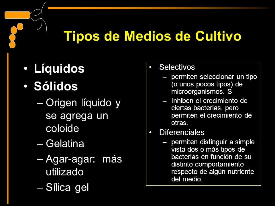 Tipos de Medios de Cultivo Líquidos Sólidos –Origen líquido y se agrega un coloide –Gelatina –Agar-agar: más utilizado –Sílica gel Selectivos –permiten seleccionar un tipo (o unos pocos tipos) de microorganismos.