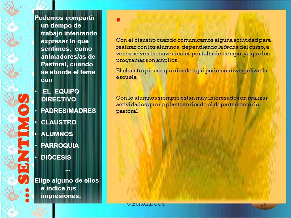 © Editorial CCS13... SENTIMOS Podemos compartir un tiempo de trabajo intentando expresar lo que sentimos, como animadores/as de Pastoral, cuando se ab