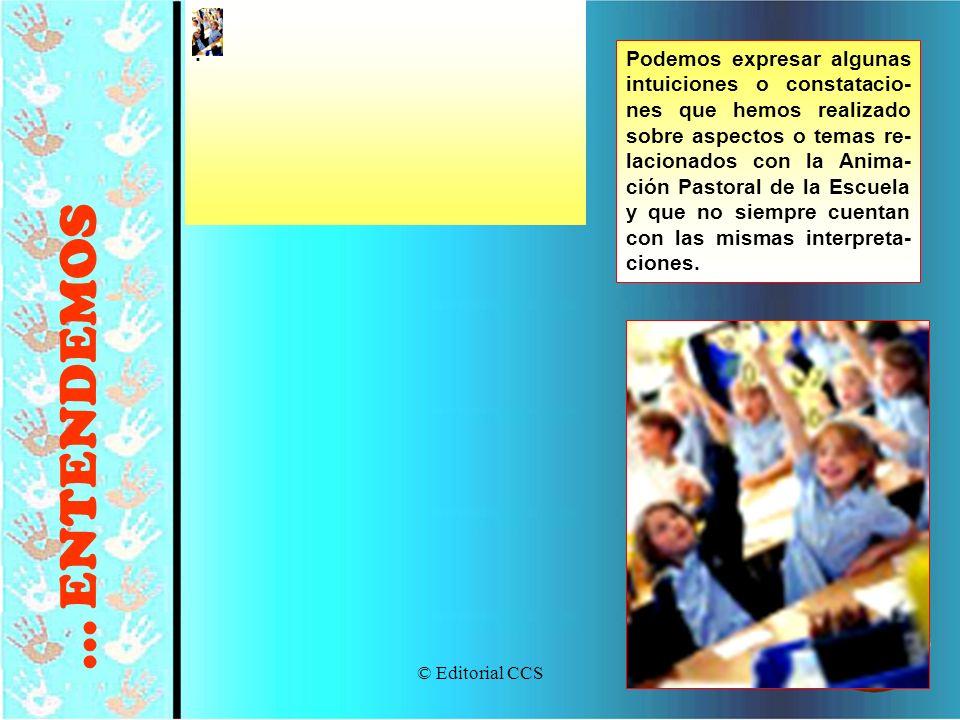 © Editorial CCS22 Podemos expresar algunas intuiciones o constatacio- nes que hemos realizado sobre aspectos o temas re- lacionados con la Anima- ción
