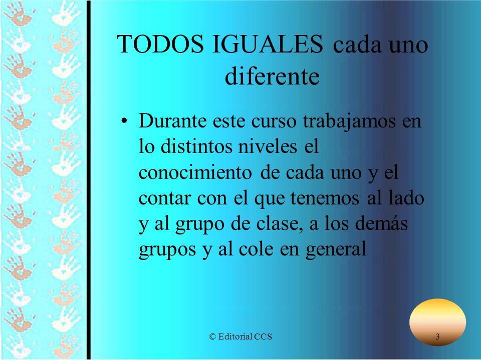 © Editorial CCS94 CREYENTES IDENTIFICADOS CON LA PROPUESTA EDUCATIVA AUTOESTIMA CONTROL RAZONABLE DE SU VIDA ABIERTOS, OPTIMISTAS, CONSTRUCTIVOS LIDERES DE UN TRABAJO EN EQUIPO COMPETENCIAS DE LOS ANIMADORES INDICE