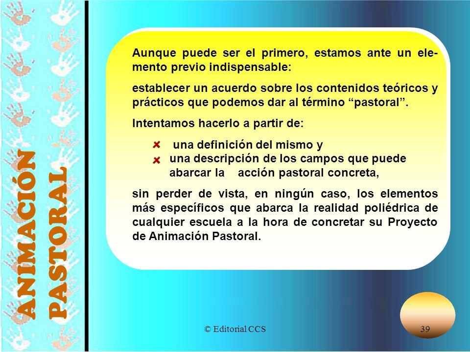 © Editorial CCS39 ANIMACIÓN PASTORAL Aunque puede ser el primero, estamos ante un ele- mento previo indispensable: establecer un acuerdo sobre los con