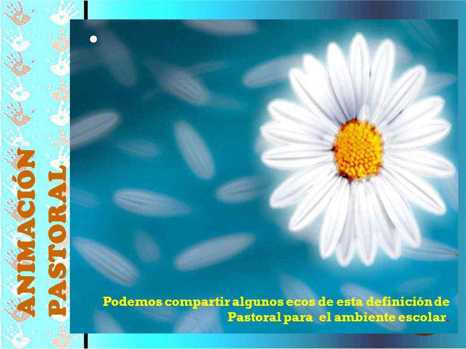 © Editorial CCS42 Podemos compartir algunos ecos de esta definición de Pastoral para el ambiente escolar. ANIMACIÓN PASTORAL