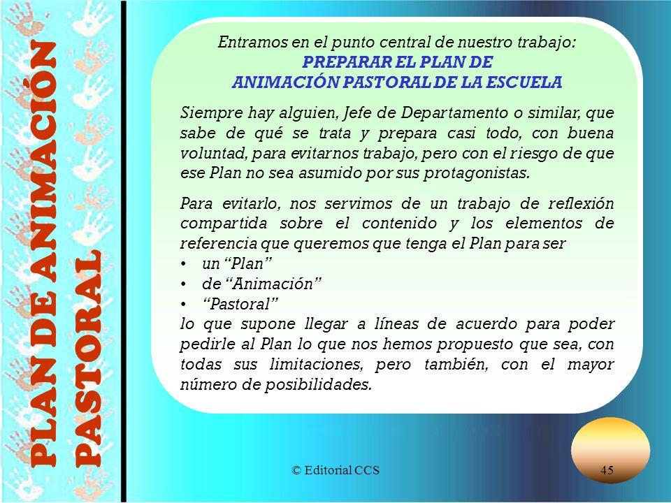 © Editorial CCS45 PLAN DE ANIMACIÓN PASTORAL Entramos en el punto central de nuestro trabajo: PREPARAR EL PLAN DE ANIMACIÓN PASTORAL DE LA ESCUELA Sie