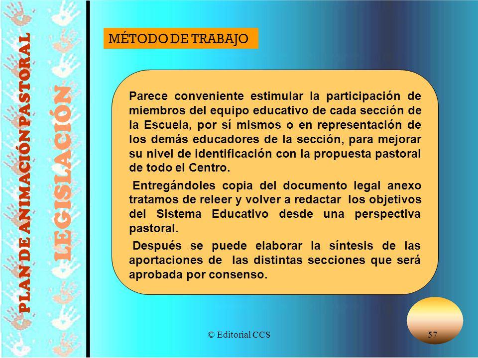 © Editorial CCS57 PLAN DE ANIMACIÓN PASTORAL LEGISLACIÓN Parece conveniente estimular la participación de miembros del equipo educativo de cada secció