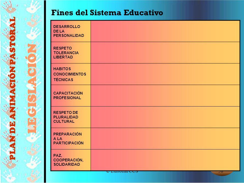 © Editorial CCS58 Fines del Sistema Educativo DESARROLLO DE LA PERSONALIDAD RESPETO TOLERANCIA LIBERTAD HABITOS CONOCIMIENTOS TÉCNICAS CAPACITACIÓN PR