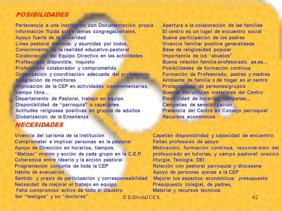 © Editorial CCS62 POSIBILIDADES Pertenencia a una institución con Documentación propiaApertura a la colaboración de las familias Información fluida so