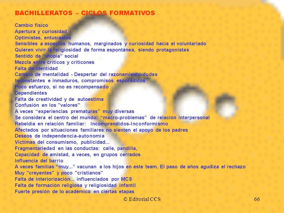 © Editorial CCS66 BACHILLERATOS – CICLOS FORMATIVOS Cambio físico Apertura y curiosidad. Optimistas, entusiastas Sensibles a aspectos humanos, margina
