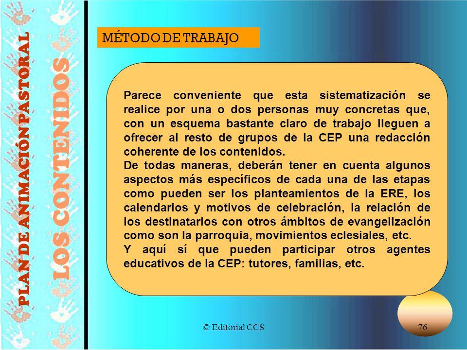 © Editorial CCS76 PLAN DE ANIMACIÓN PASTORAL LOS CONTENIDOS Parece conveniente que esta sistematización se realice por una o dos personas muy concreta