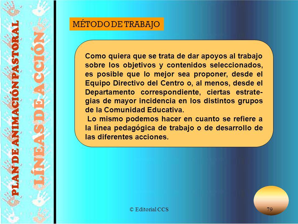 © Editorial CCS79 PLAN DE ANIMACIÓN PASTORAL LÍNEAS DE ACCIÓN Como quiera que se trata de dar apoyos al trabajo sobre los objetivos y contenidos selec