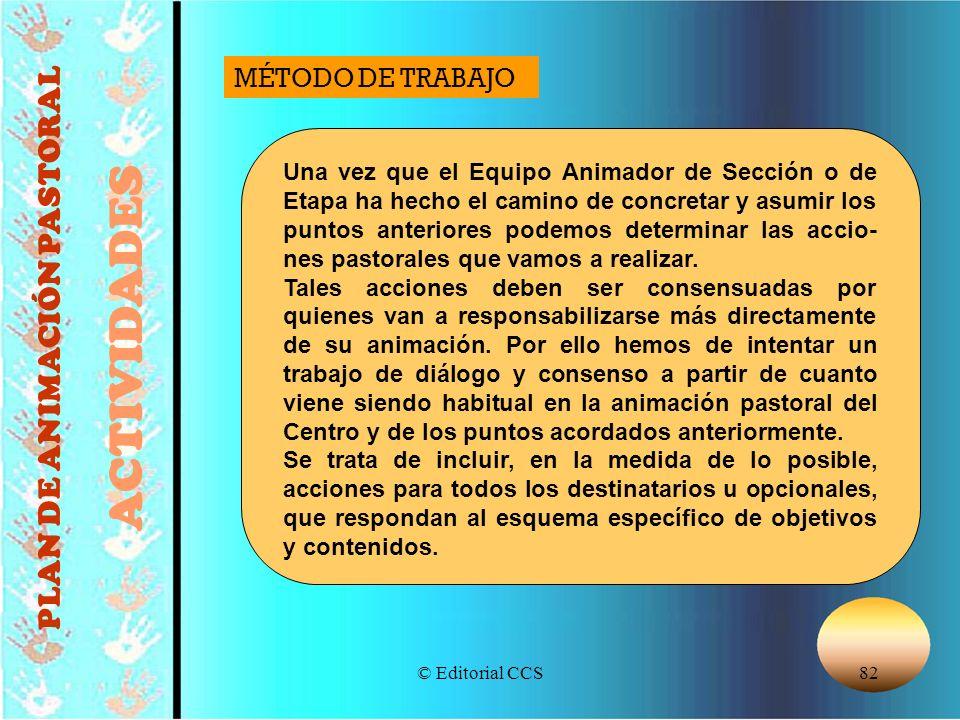© Editorial CCS82 PLAN DE ANIMACIÓN PASTORAL ACTIVIDADES Una vez que el Equipo Animador de Sección o de Etapa ha hecho el camino de concretar y asumir