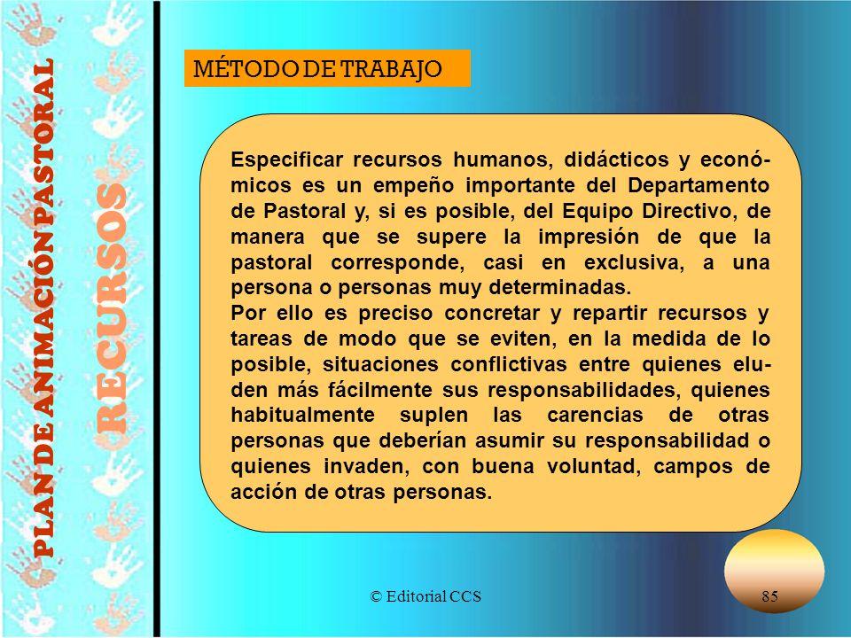 © Editorial CCS85 PLAN DE ANIMACIÓN PASTORAL RECURSOS Especificar recursos humanos, didácticos y econó- micos es un empeño importante del Departamento