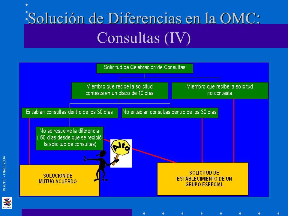 © WTO - OMC 2004 Solución de Diferencias en la OMC : Solución de Diferencias en la OMC : Consultas (IV)