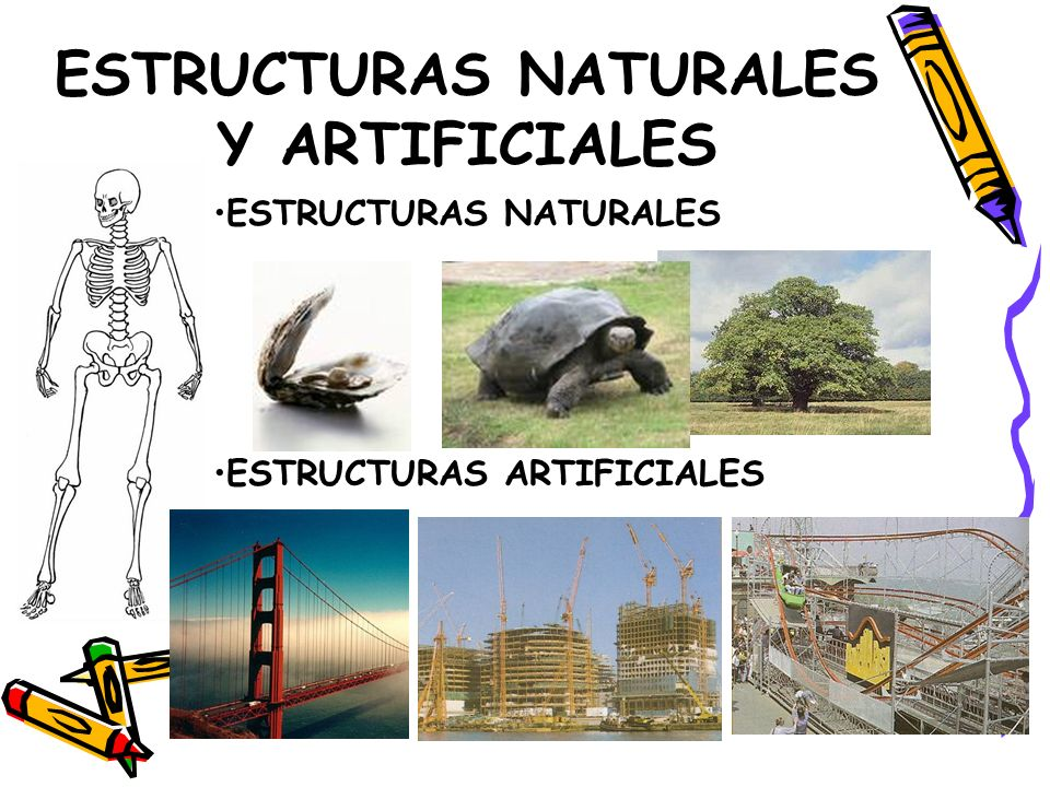 ESTRUCTURAS NATURALES Y ARTIFICIALES ESTRUCTURAS NATURALES ESTRUCTURAS ARTIFICIALES