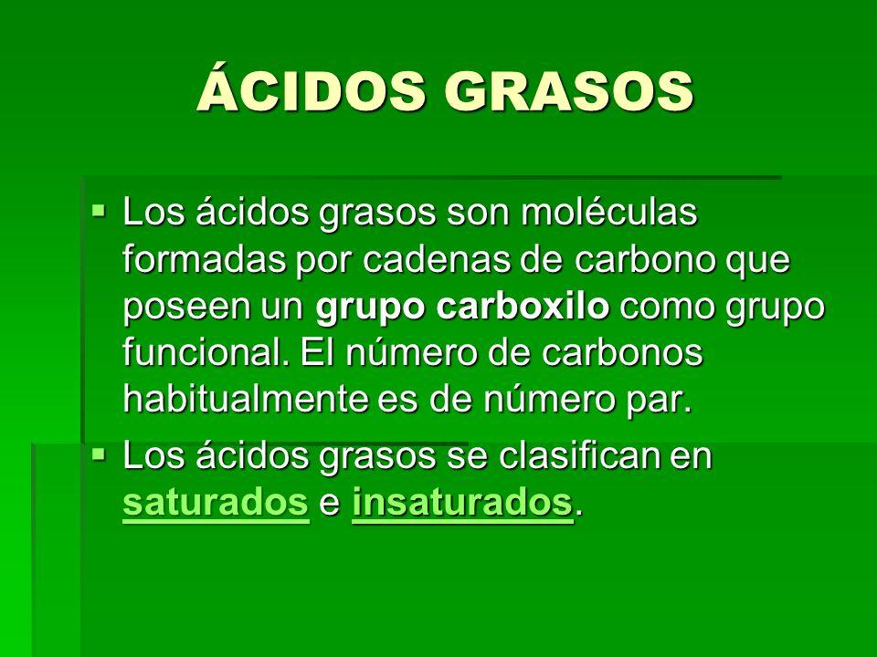 ÁCIDOS GRASOS Los ácidos grasos son moléculas formadas por cadenas de carbono que poseen un grupo carboxilo como grupo funcional. El número de carbono