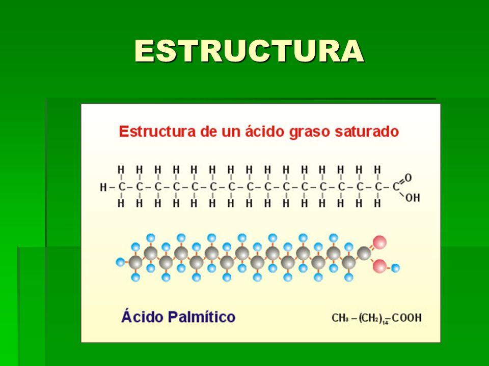 INSATURADO En ellos pueden aparecer enlaces dobles o triples entre los carbonos de la cadena.