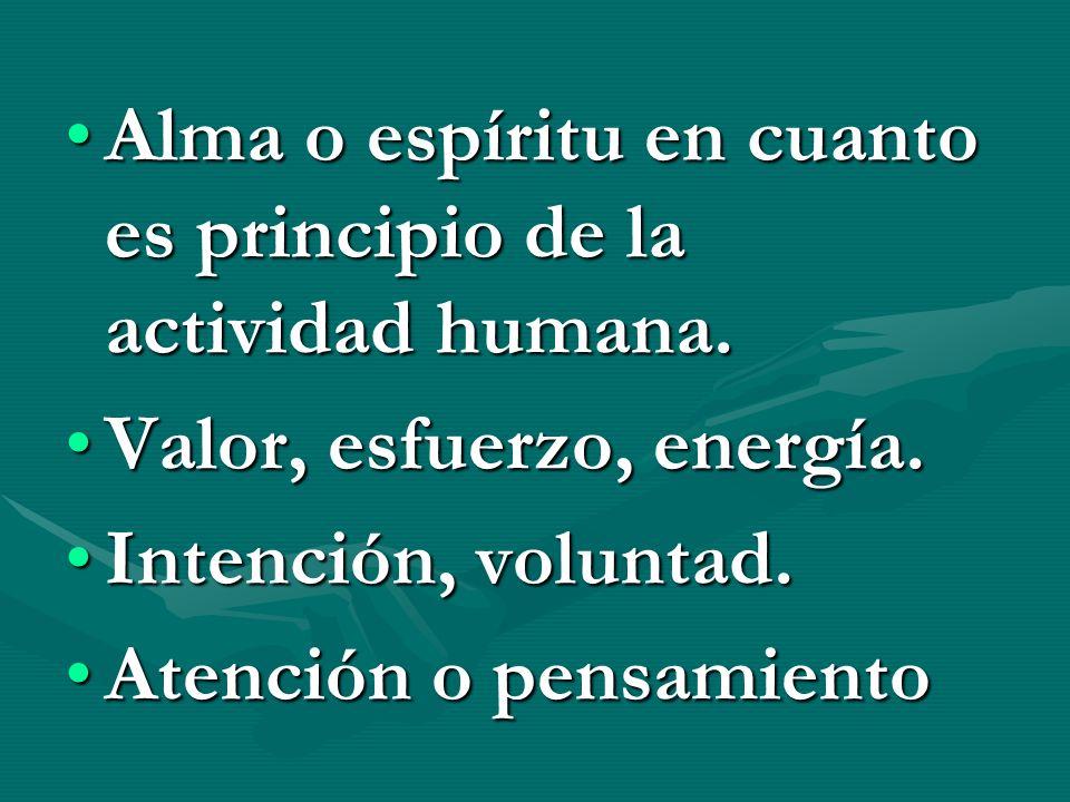 Alma o espíritu en cuanto es principio de la actividad humana.Alma o espíritu en cuanto es principio de la actividad humana. Valor, esfuerzo, energía.