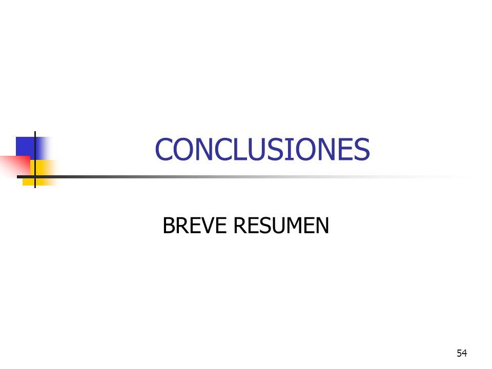 54 CONCLUSIONES BREVE RESUMEN