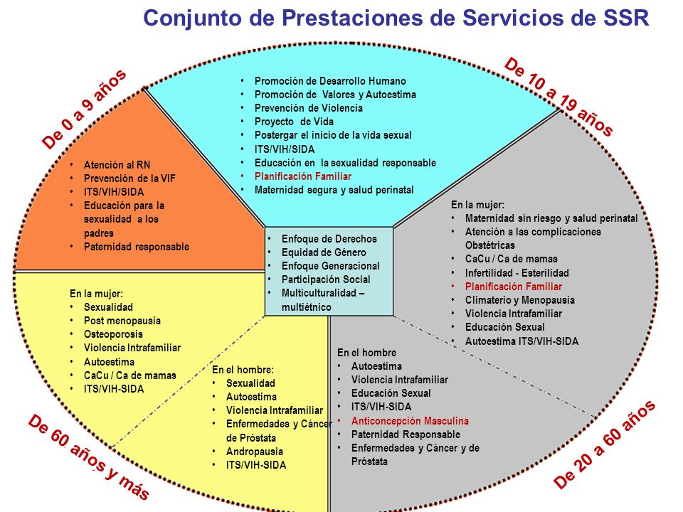 Promoción de Desarrollo Humano Promoción de Valores y Autoestima Prevención de Violencia Proyecto de Vida Postergar el inicio de la vida sexual ITS/VI
