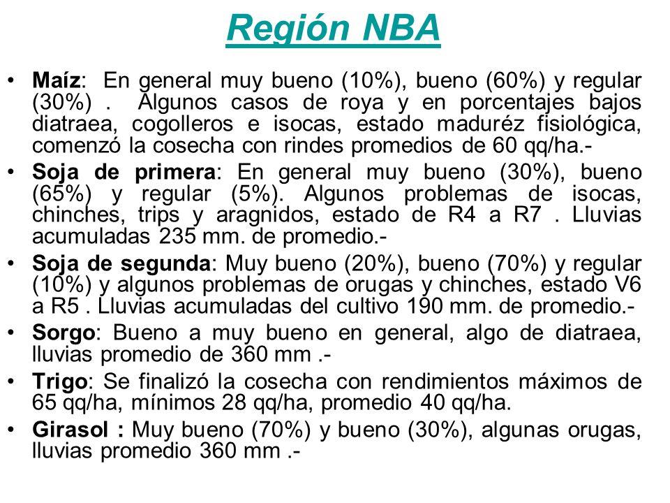 Región NBA Maíz: En general muy bueno (10%), bueno (60%) y regular (30%). Algunos casos de roya y en porcentajes bajos diatraea, cogolleros e isocas,