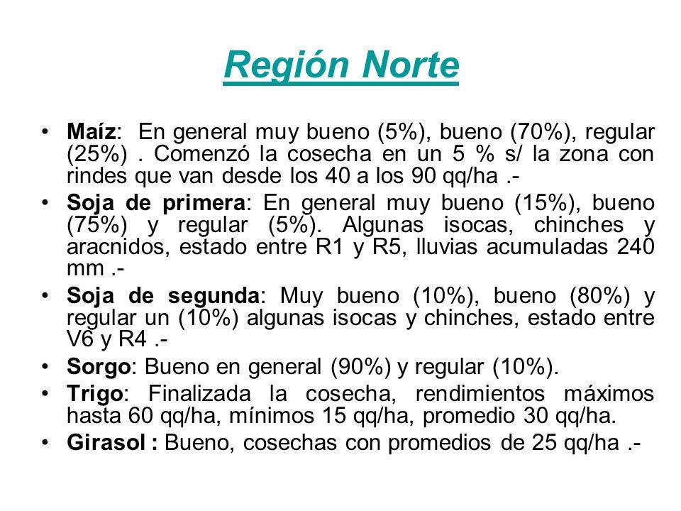Región Norte Maíz: En general muy bueno (5%), bueno (70%), regular (25%). Comenzó la cosecha en un 5 % s/ la zona con rindes que van desde los 40 a lo