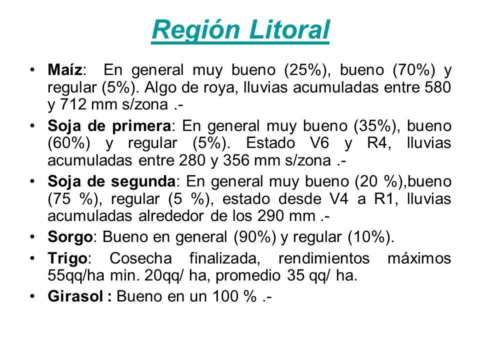 Región Litoral Maíz: En general muy bueno (25%), bueno (70%) y regular (5%). Algo de roya, lluvias acumuladas entre 580 y 712 mm s/zona.- Soja de prim