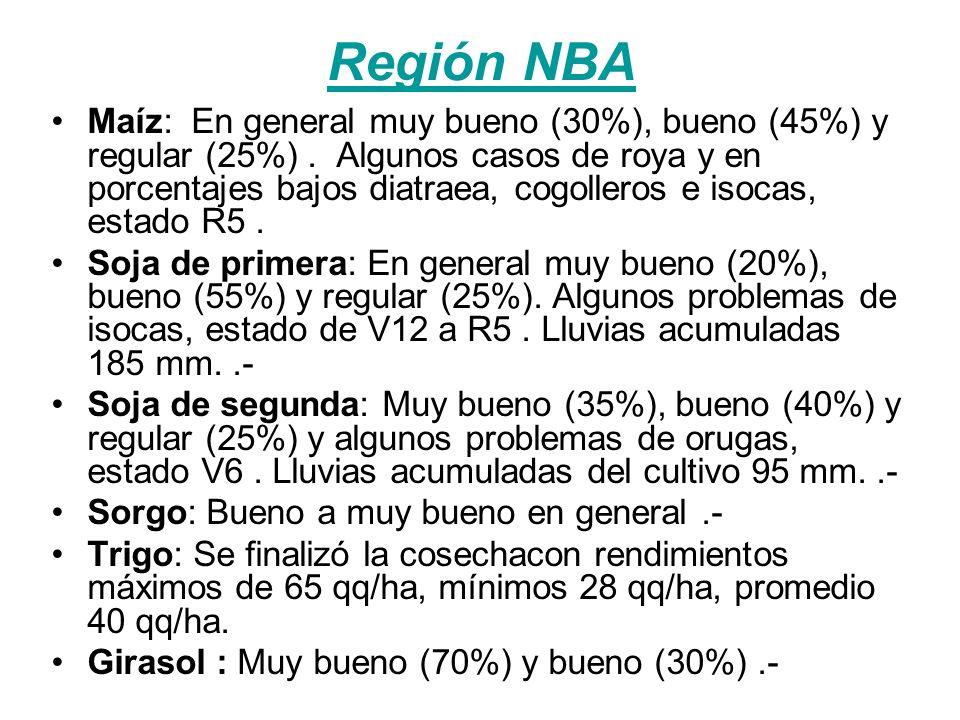 Región NBA Maíz: En general muy bueno (30%), bueno (45%) y regular (25%).
