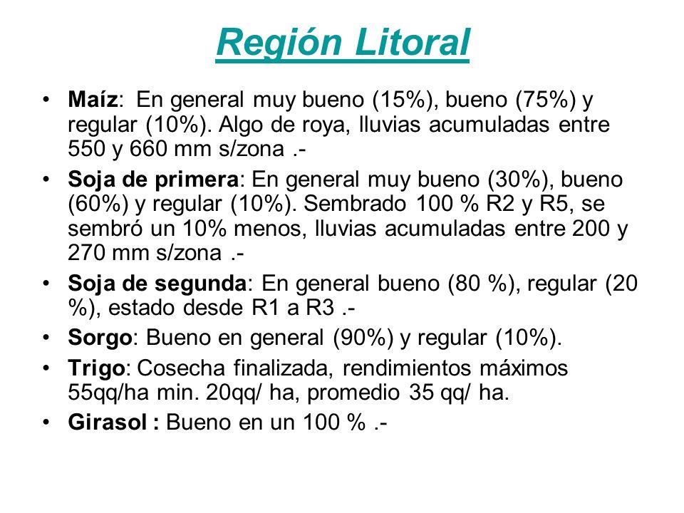 Región Litoral Maíz: En general muy bueno (15%), bueno (75%) y regular (10%).