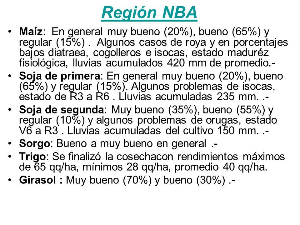 Región NBA Maíz: En general muy bueno (20%), bueno (65%) y regular (15%).