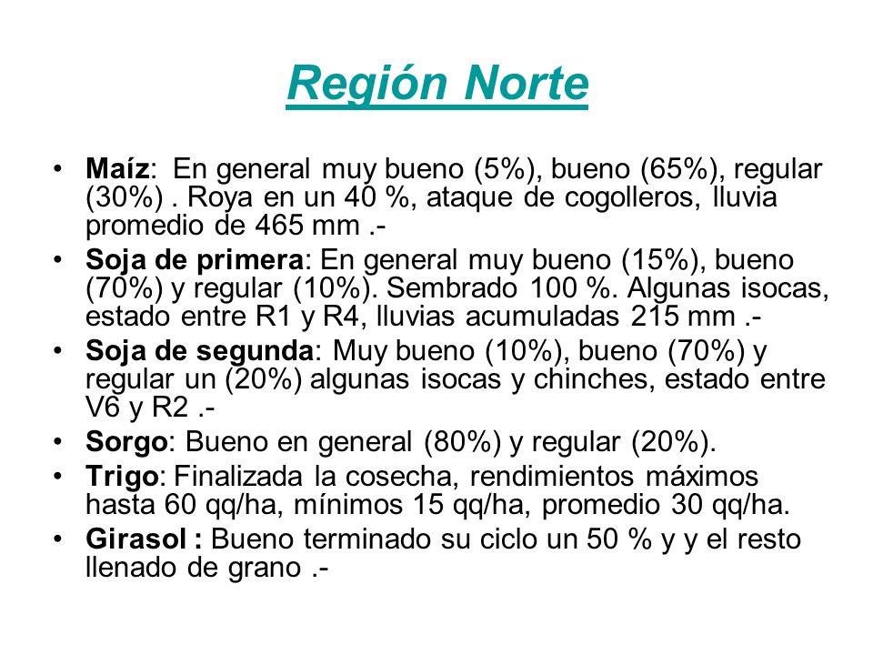 Región Lejano Oeste Maíz: La intención de siembra fue superior en un 15 %.