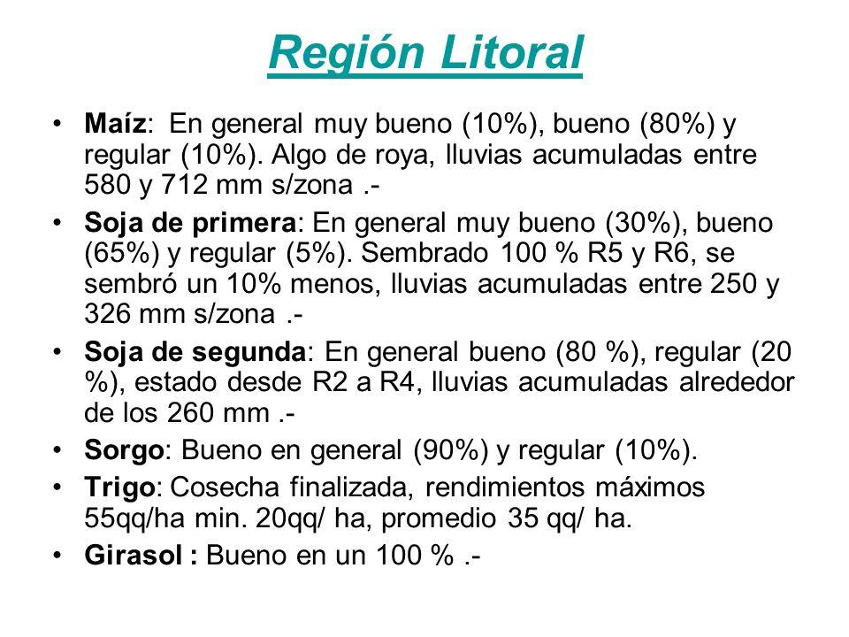 Región Litoral Maíz: En general muy bueno (10%), bueno (80%) y regular (10%).