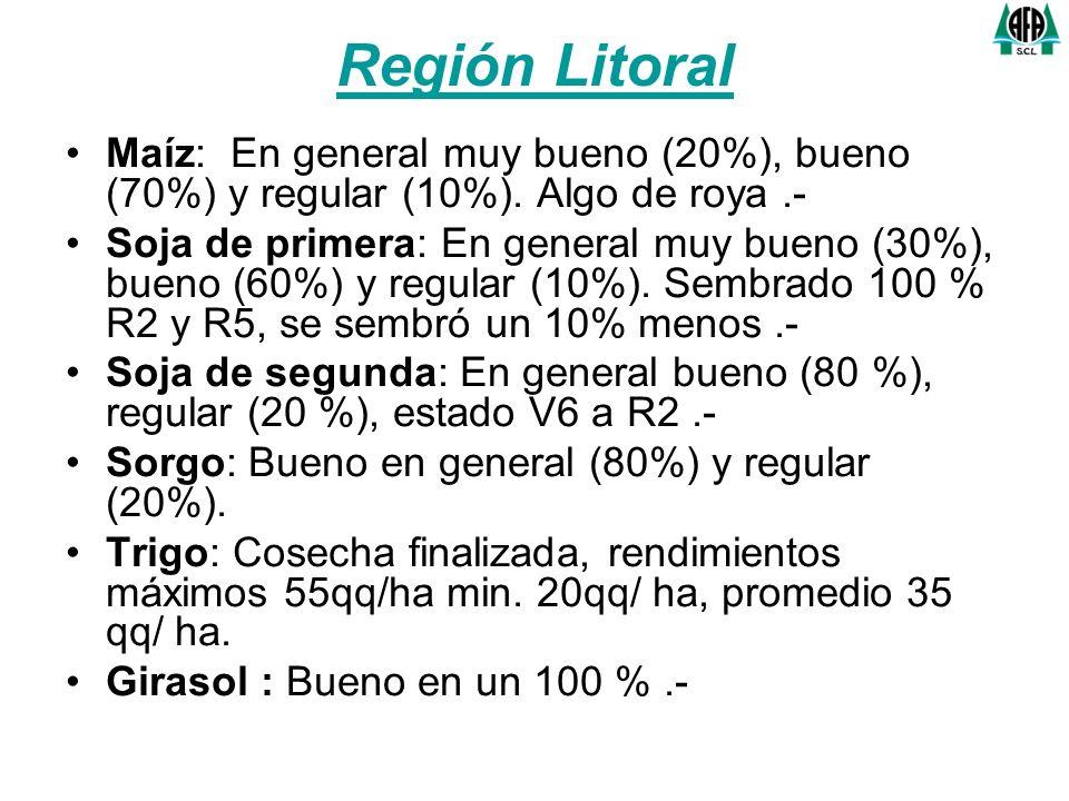 Región Litoral Maíz: En general muy bueno (20%), bueno (70%) y regular (10%). Algo de roya.- Soja de primera: En general muy bueno (30%), bueno (60%)