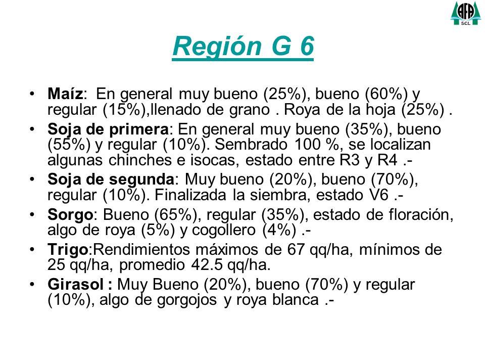 Región G 6 Maíz: En general muy bueno (25%), bueno (60%) y regular (15%),llenado de grano. Roya de la hoja (25%). Soja de primera: En general muy buen