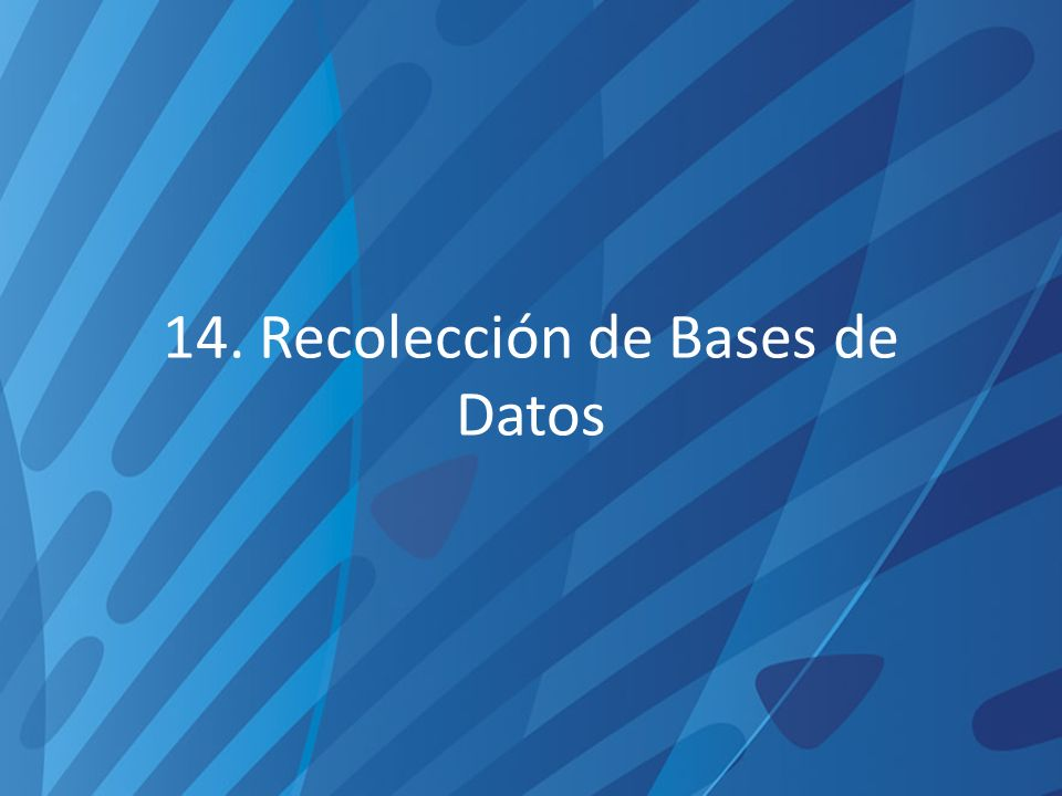 14. Recolección de Bases de Datos