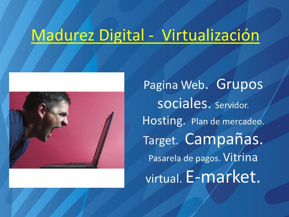 Madurez Digital - Virtualización Pagina Web. Grupos sociales.