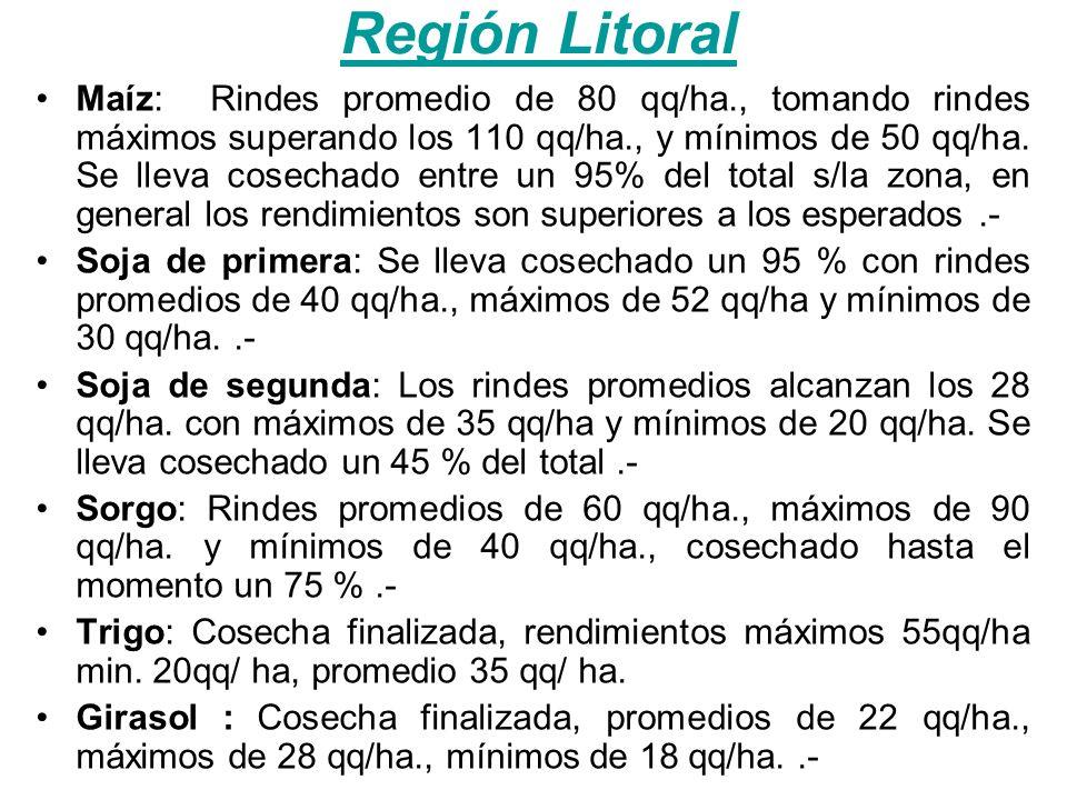 Región Litoral Maíz: Rindes promedio de 80 qq/ha., tomando rindes máximos superando los 110 qq/ha., y mínimos de 50 qq/ha.