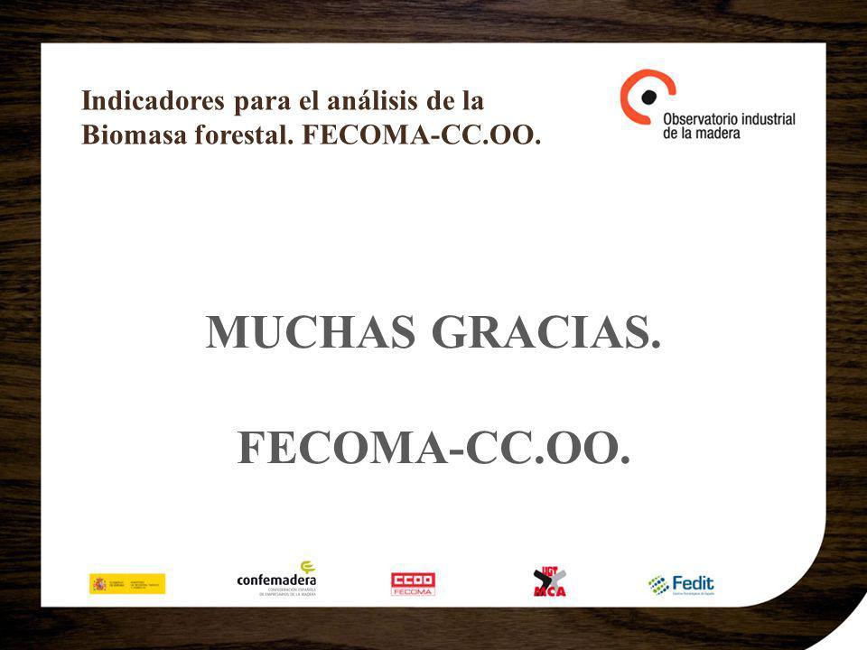 Indicadores para el análisis de la Biomasa forestal. FECOMA-CC.OO. MUCHAS GRACIAS. FECOMA-CC.OO.