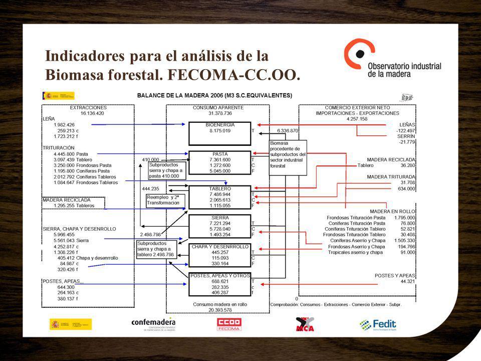 Indicadores para el análisis de la Biomasa forestal. FECOMA-CC.OO.