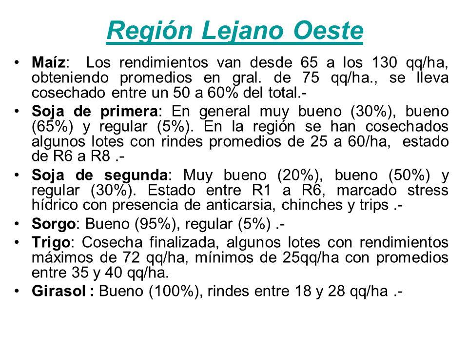 Región Lejano Oeste Maíz: Los rendimientos van desde 65 a los 130 qq/ha, obteniendo promedios en gral.
