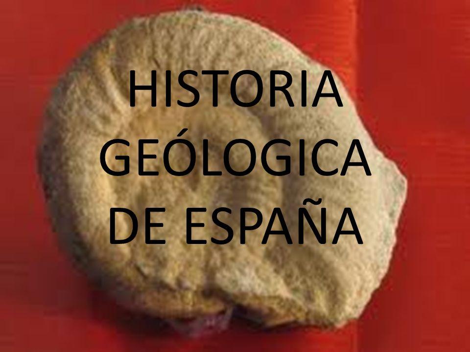 HISTORIA DEL RELIEVE en tres etapas fundamentales Durante el Paleozoico (600 m.
