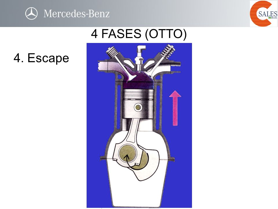 4. Escape 4 FASES (OTTO)