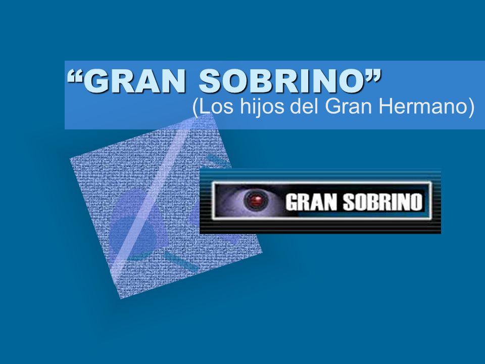 GRAN SOBRINO (Los hijos del Gran Hermano) Para introducir el logotipo de su organización en esta diapositiva En el menú Insertar Seleccione Imagen Ubi
