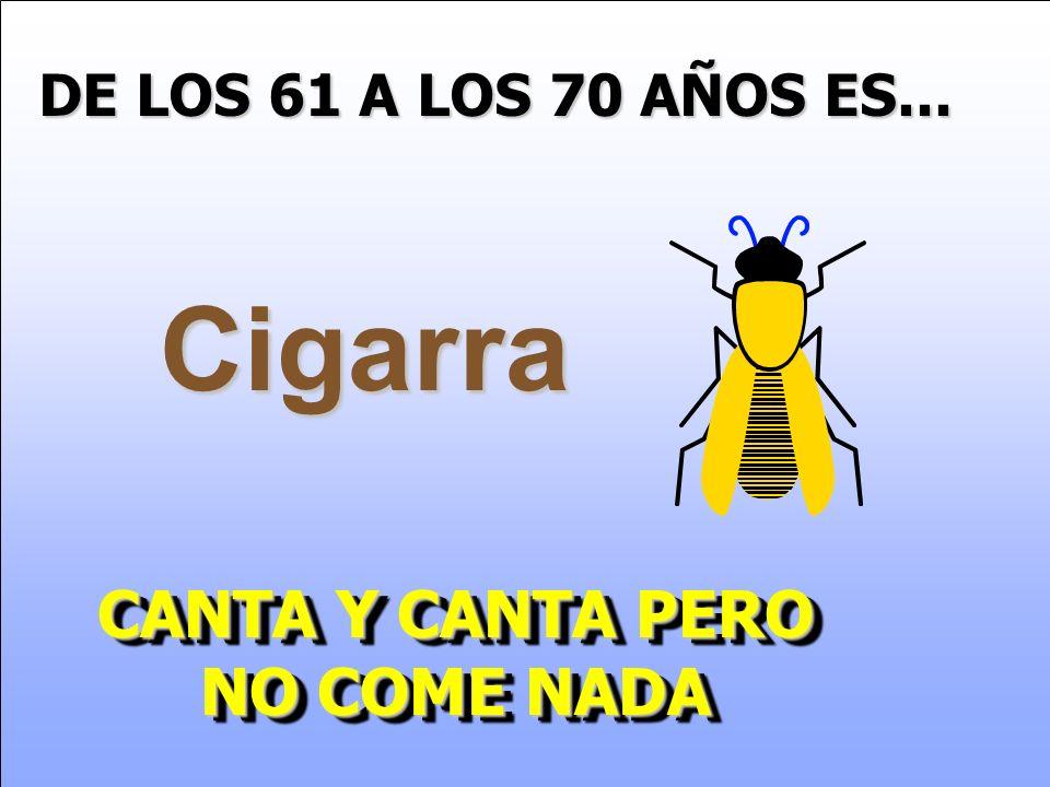 DE LOS 61 A LOS 70 AÑOS ES... Cigarra CANTA Y CANTA PERO NO COME NADA CANTA Y CANTA PERO NO COME NADA