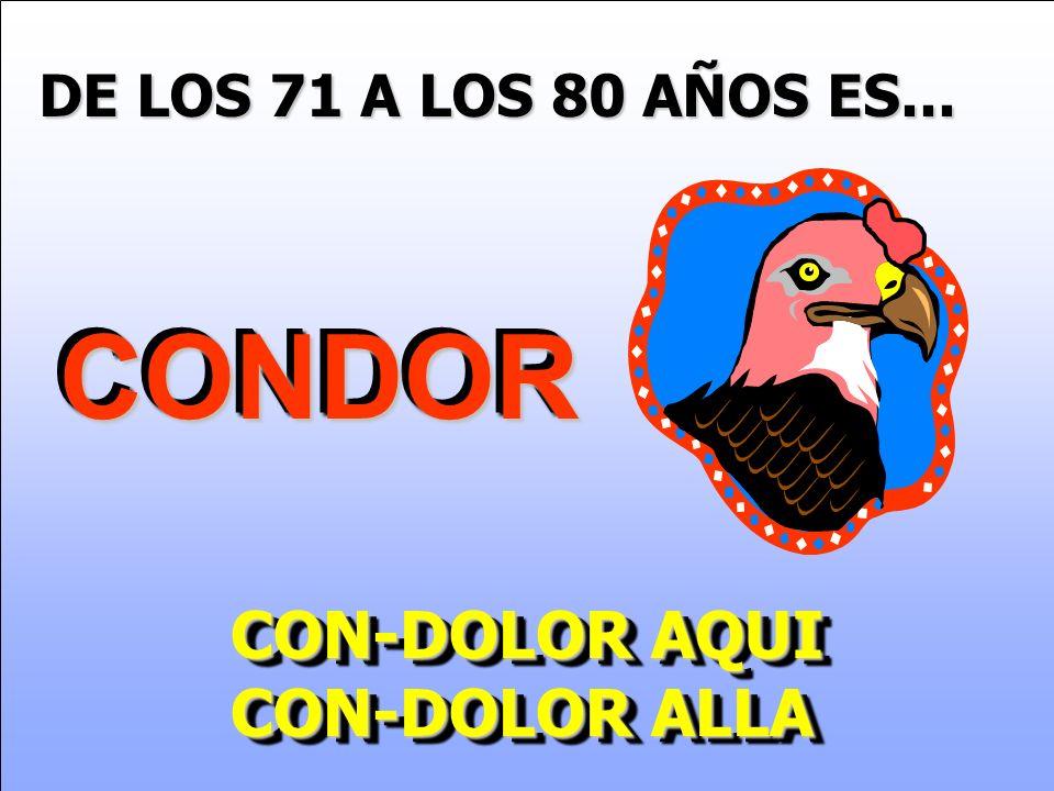 DE LOS 71 A LOS 80 AÑOS ES... CONDORCONDOR CON-DOLOR AQUI CON-DOLOR ALLA CON-DOLOR AQUI CON-DOLOR ALLA