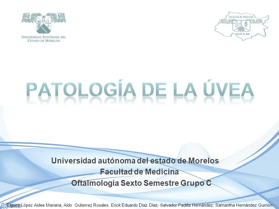 Universidad autónoma del estado de Morelos Facultad de Medicina Oftalmología Sexto Semestre Grupo C Elguea López Aidee Mariana, Aldo Gutierrez Rosales